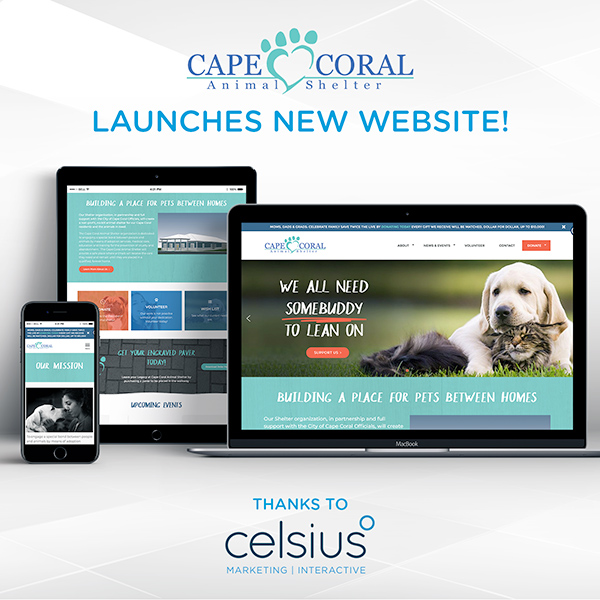 CCAS Launches New Website