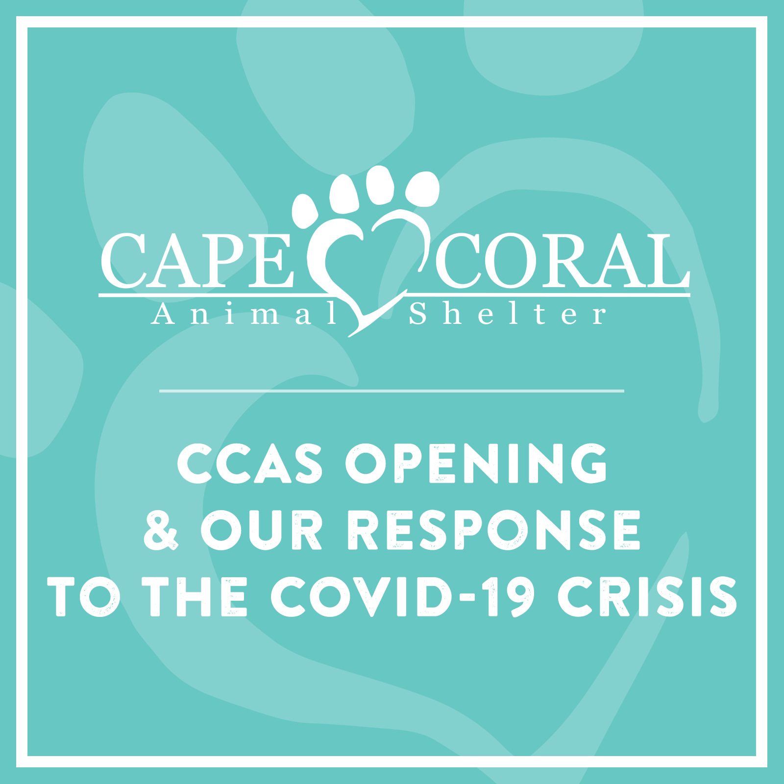 CCAS Opening and Our Response to the COVID-19 Crisis