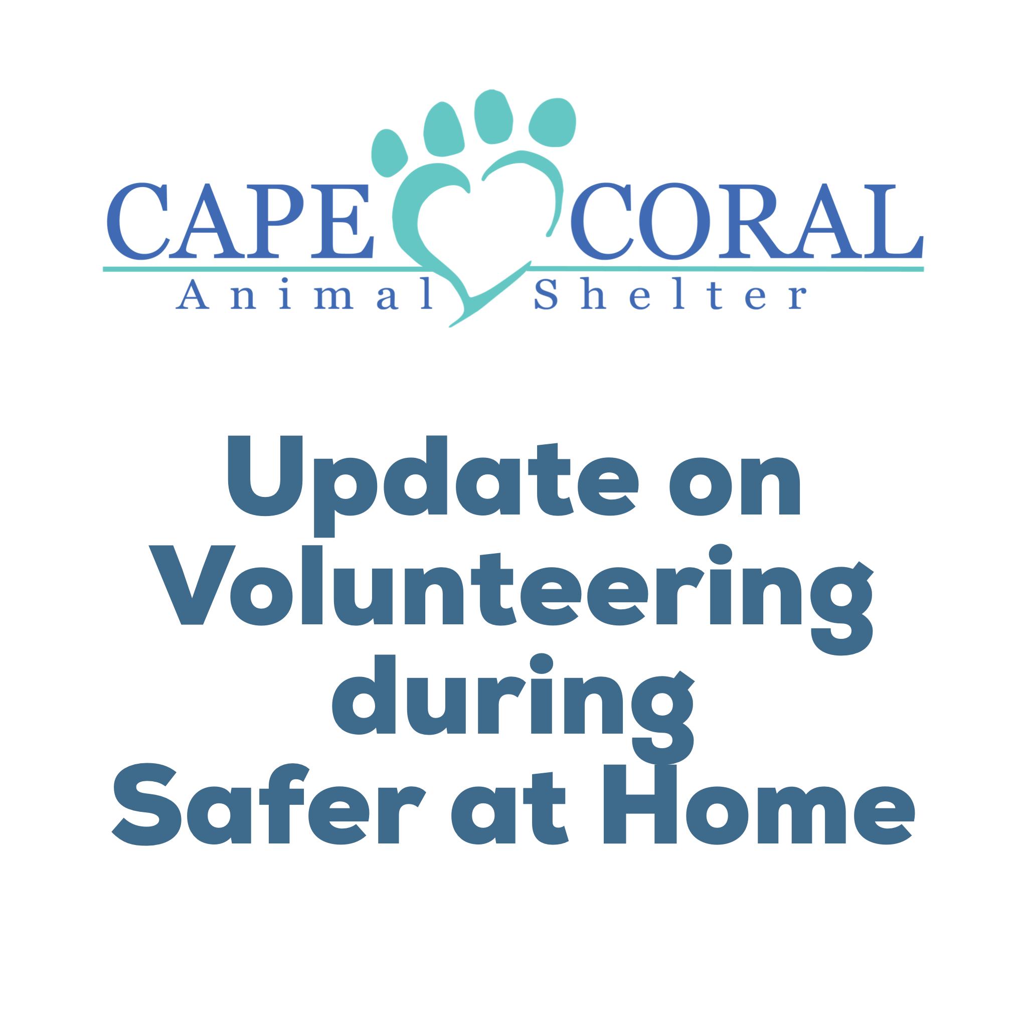 Volunteering during Safer at Home