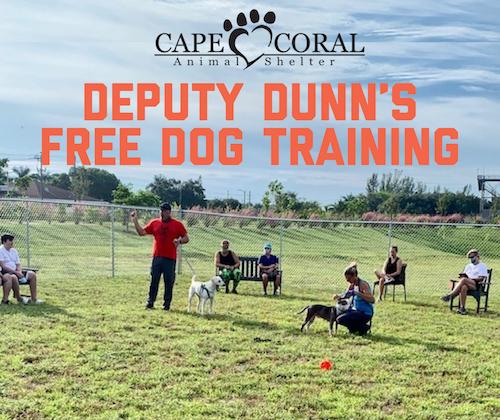 Deputy Dunn's Free Dog Training