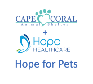 Hope for Pets, Foster Program for Hospice Patients